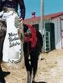Miss Rodeo Idaho by Lisa Eisner