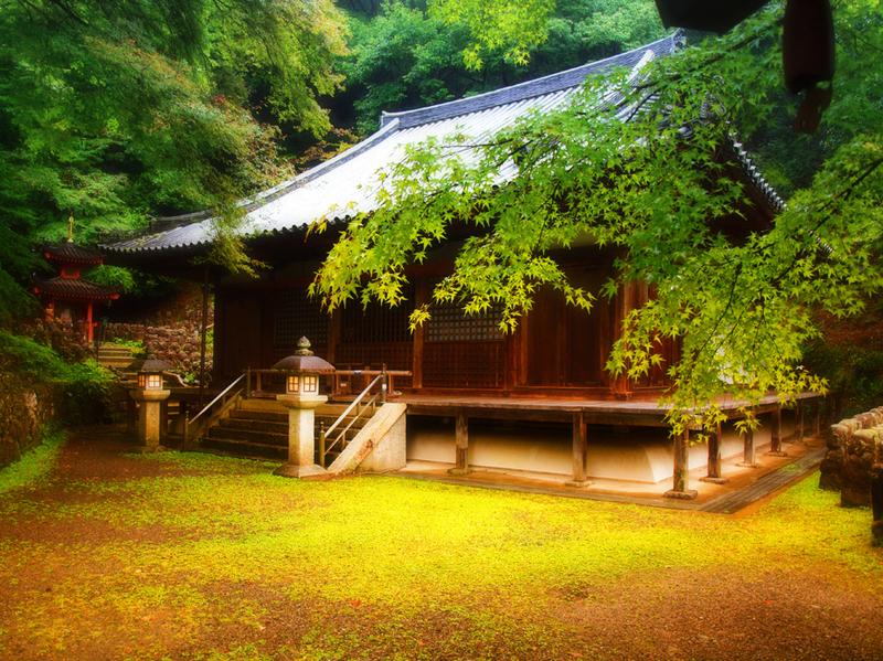 Serie Japan / Autumm'09: Kyoto no iro I by Sonia A. Alzola