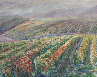 Wineyard at rain by Moti Lorber