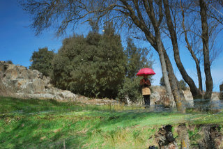 The woman's red umbrella III by Brandan