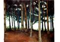 interior de los bosques 2 by Emiliana Guerrero Guardiola