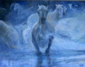Horses in water by Sylva Zalmanson