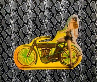 Motorbike on Snakeskin by Steve Kaufman