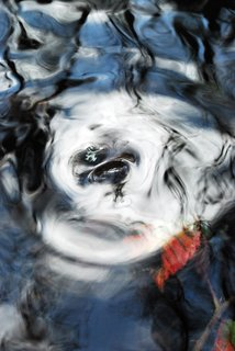 Cocaine Dreams by Brandan