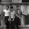 Three Young Men by Danny Lyon