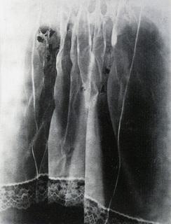 Torn by Pamela Caughey