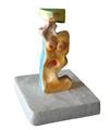 Figura 11 - serie Libera 2010 by Stefano Bianco