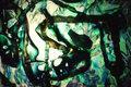 Green Placton by Esther Santiago García