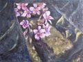 Flower Macachín by Rosario de Mattos