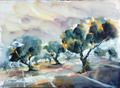 Olives by Juan Félix Campos