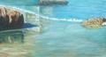 playa de tazones by JOSE ENRIQUE MIJARES GARCIA