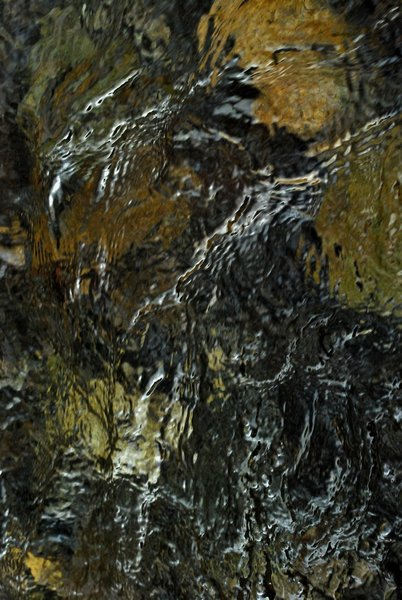 Agony of the Phoenix by Brandan