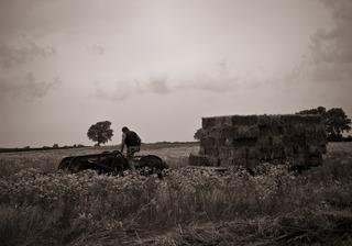 Farmer by Chao Xia