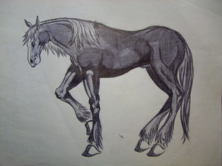 """Horse (start the technique """"confused"""") by PACHI"""