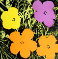 Flowers IV by Andy Warhol