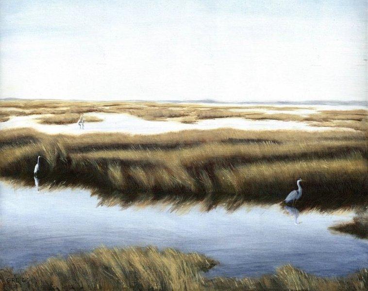 Gulf Marsh - Gulf Coast, Florida by g. linsenmayer