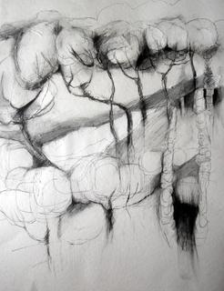 Rome Trees bianco e nero by Alex Mackenzie