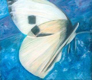 Butterfly by Mania Row