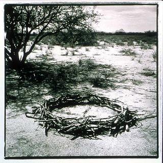 Prisoner's Wheel, Marana, Arizona by Stu Jenks