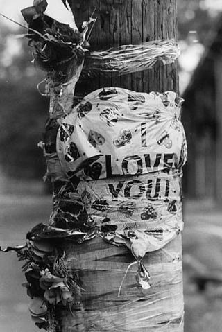 I Love You, R.I.P by Helen M. Stummer