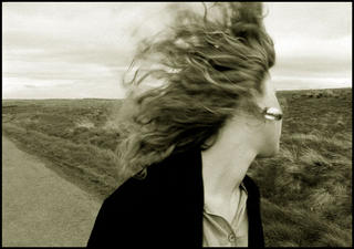 Windswept by Jeremy Webb