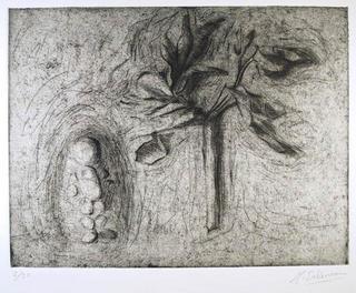 Boy and Tree by Marisa M. Salmean