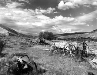 Barney's Wagons by Larry Friedman