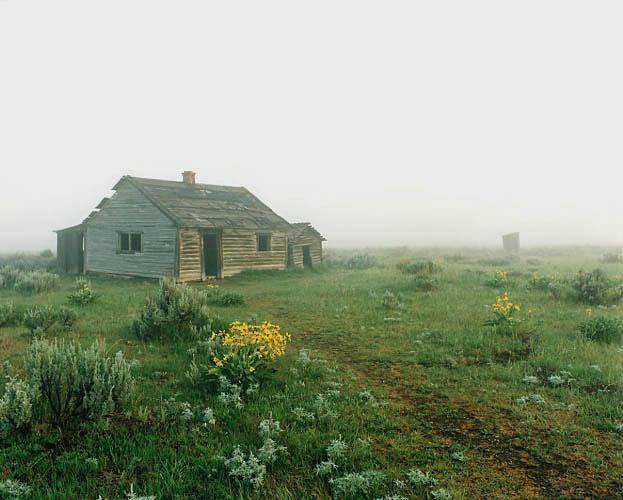 Pfeiffer Estate Fog, Teton Park, Wyoming by Larry Friedman