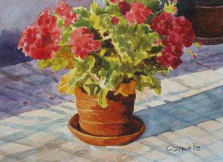 Geranium by Carmela Rodríguez Ruiz
