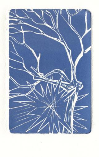 Star with Tree by Luis Yngüanzo