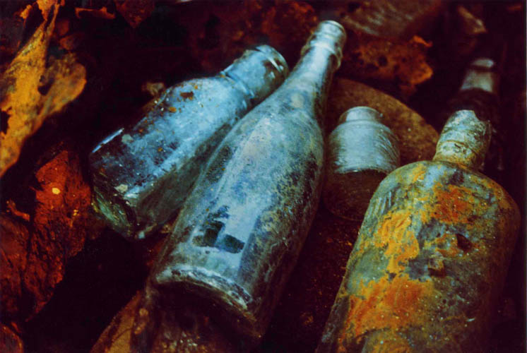 Untitled 5 (from the Bottle Series) by Robert Christie