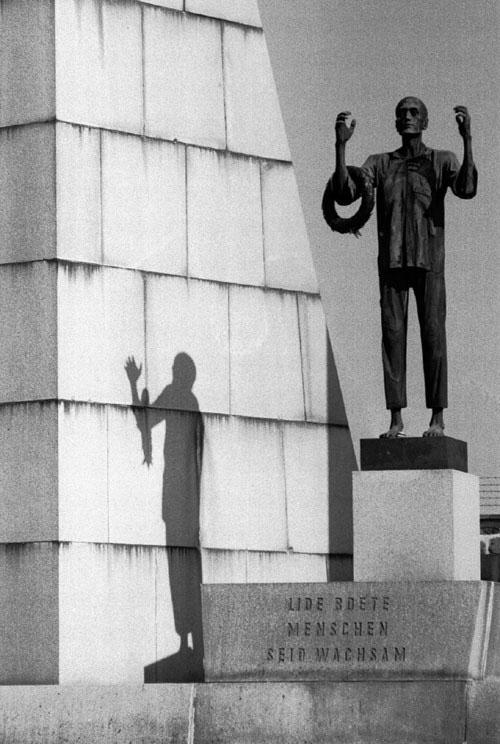 Shadow by Ramón Sans