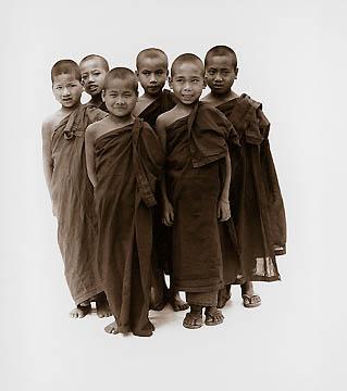 Novice Monks by Tim Hall