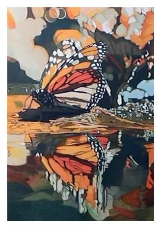 Butterfly by Fran Bull