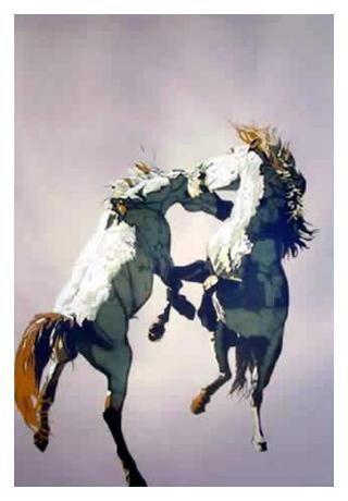 Fighting Horses by Fran Bull