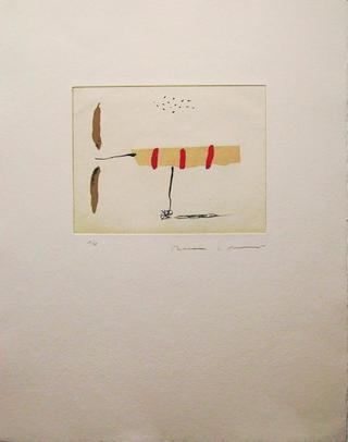 Avio Petit 2 by Josep María Riera i Aragó