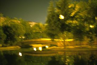Bridge Over Pond (from the Series Paisajes Oscuros) by José Andrés Prieto