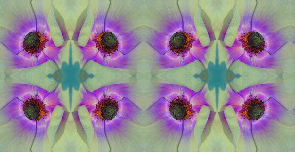 Inner I by Sandra Harper