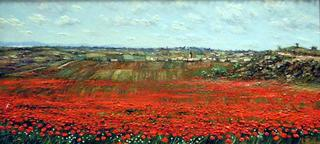 Poppies by Marcos Rubio
