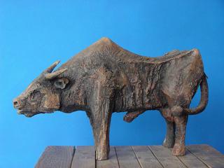 Bull by Piotr Woroniec
