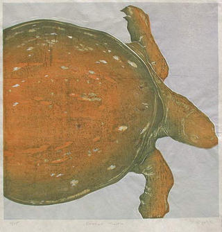 Orange Turtle by Ralph Kiggell