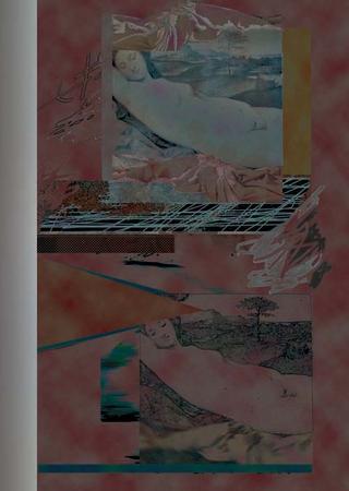 Venusitats en Terra by Pere Planells