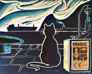 Marine Cat - My Heart in a Box by Luis Yngüanzo