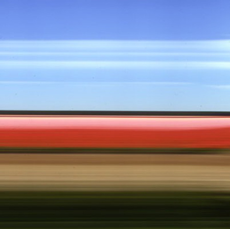 Travelling Still Tulip Fields Holland II by Rob Carter