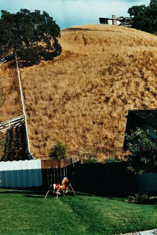 Hillside with Toy Horse by Bill Owens