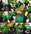 Essere Verde by Marta Valenti