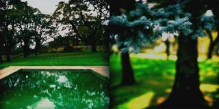 Bluesprucepool (Diptych) by Robert Kenney