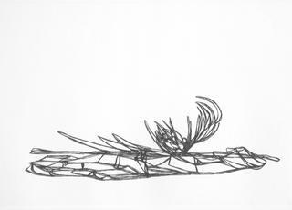 Trembling Bog 1 by Rob Den Boer