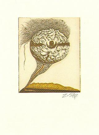 Mabrain (from the Arte Para Curarte Series) by Zush
