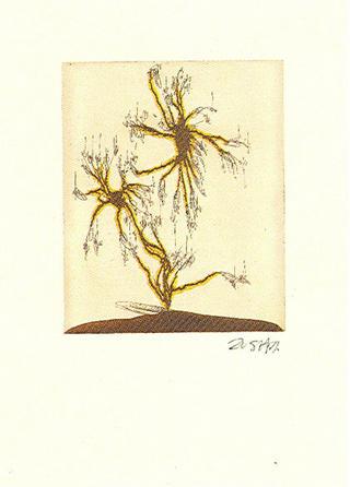 Anzuras (from the Arte Para Curarte Series) by Zush